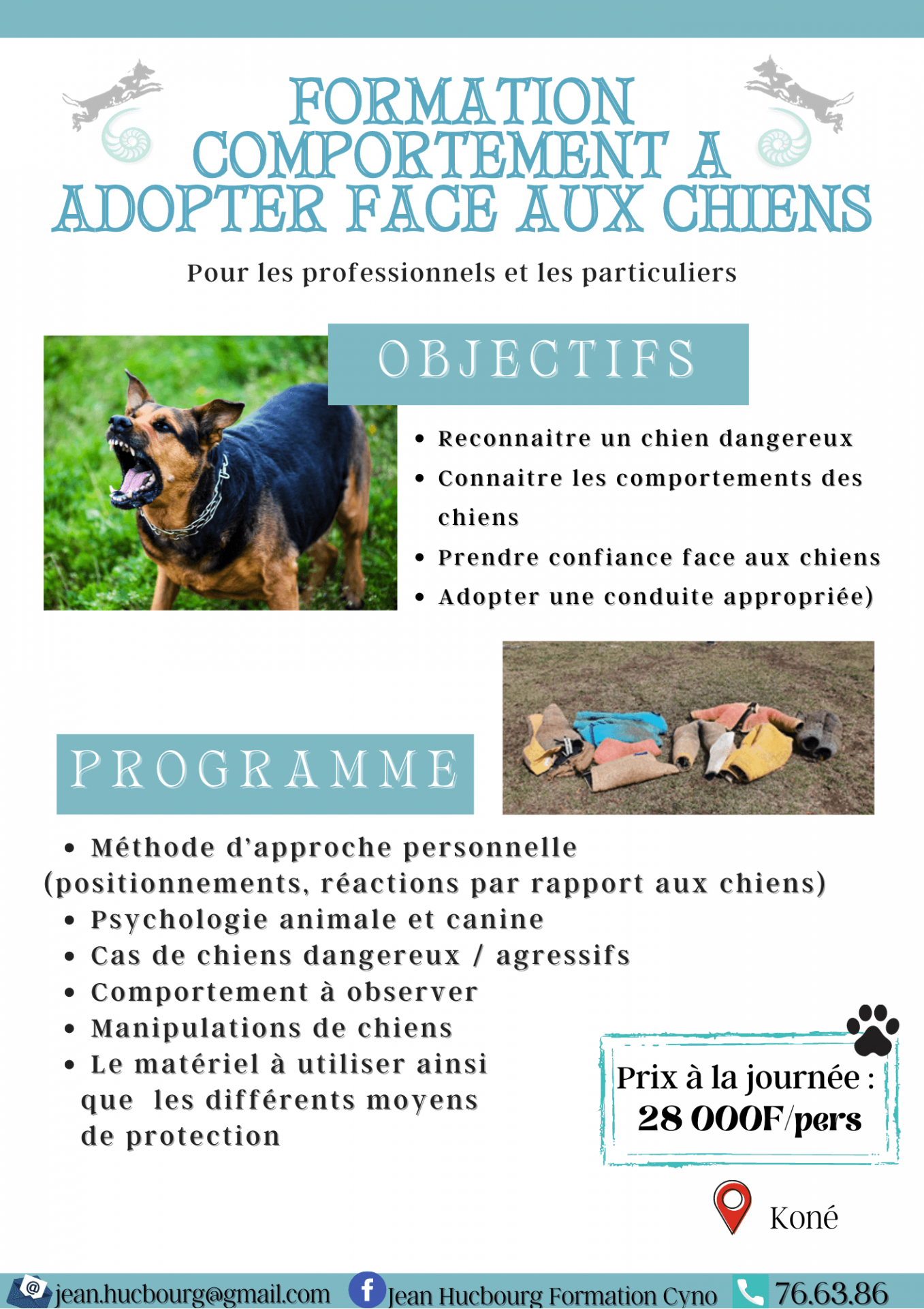 Formation comportement a adopter face aux chiens